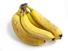 Free Bananas Royalty Free Stock Photo - 1965495