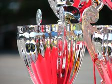 Free Rally Cup Royalty Free Stock Photos - 1969218