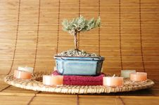 Free Candle Circle Royalty Free Stock Photo - 1969625