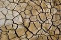 Free Dried Mud Cracks Stock Photography - 19605722