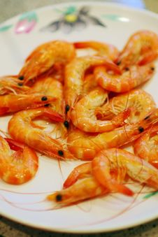 Free Shrimp Royalty Free Stock Photos - 19600118