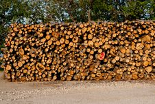 Free Pile Of Woods Royalty Free Stock Photo - 19602775