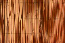 Free Reed Fence Stock Photos - 19602793