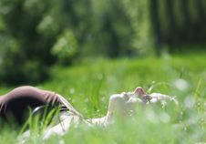 Young Woman Relaxing In Grass Royalty Free Stock Photos