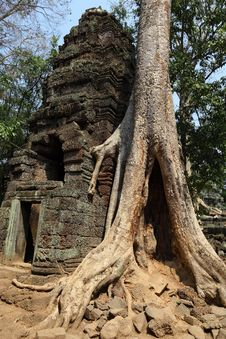 Free Angkor Wat Royalty Free Stock Photo - 19605535