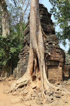 Free Angkor Wat Stock Photos - 19605633