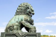 Free Bronze Lion Stock Photos - 19605653