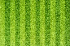 Free Artificial Grass For Background Royalty Free Stock Photos - 19605668