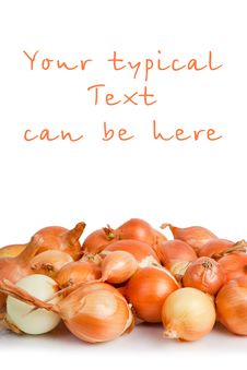Free Onions Royalty Free Stock Photography - 19605677