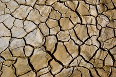 Free Dried Mud Cracks Stock Photography - 19605722