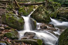 Free Strong Stream In The Woods Royalty Free Stock Images - 19605759