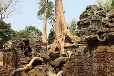 Free Angkor Wat Stock Photos - 19605773