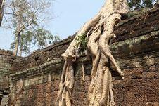 Free Angkor Wat Stock Image - 19606131