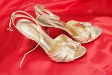 Free Golden Shoes Royalty Free Stock Image - 19606336