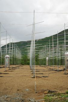 Free Field Of Antennas In Norwegian Mountains. Stock Image - 19606731