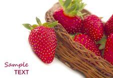 Free Strawberries Stock Image - 19606791