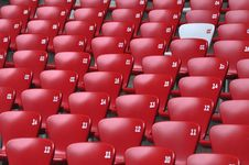 Free Auditorium  And Red Seat In Stadium Royalty Free Stock Photography - 19606887