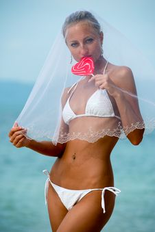 Free Lovely Bride Royalty Free Stock Photography - 19608247