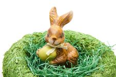 Free Easter Bunny Royalty Free Stock Photo - 19608335