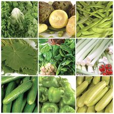 Free Vegetables Stock Photography - 19608612