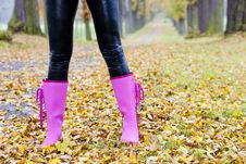Free Rubber Boots Royalty Free Stock Photography - 19608987
