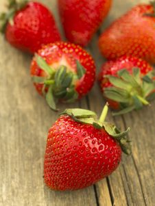 Free Strawberries Royalty Free Stock Photography - 19611237