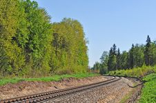 Free Railroad Track In Forest Stock Images - 19612144