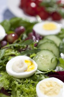 Free Eggs, Salad And Mayo Stock Photography - 19613922