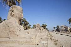 Free An Avenue Of Sphinx Stock Photos - 19613933