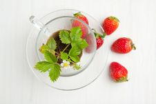 Free Sprout Of  Strawberry And Fresh Strawberries Stock Image - 19614981