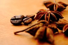 Free Anise And Coffee Beans Stock Photos - 19616453