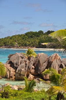 Free Anse Cocos Royalty Free Stock Images - 19618619