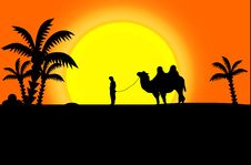Free Black Silhouettes Of Camel And Man Royalty Free Stock Photo - 19619395