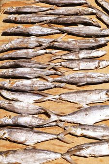 Free Dried Salted Fish Stock Photo - 19619670