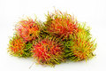 Free Rambutan Royalty Free Stock Photo - 19621005