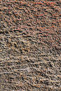 Free Rustic Brown Stone Texture Stock Photography - 19624012