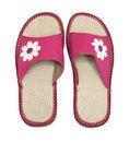 Free Pink Flip Flops Royalty Free Stock Image - 19629686