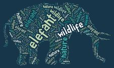Free Wordcloud Of Elefant Royalty Free Stock Images - 19622029