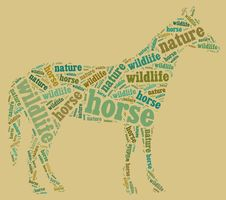 Free Wordcloud Of Horse Stock Photography - 19622112