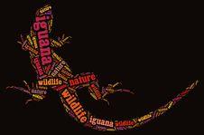 Free Textcloud Of Iguana Stock Photos - 19622143