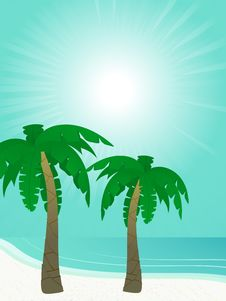 Free Summer Sun And Palm Trees Stock Photos - 19623903