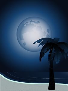 Free Tropical Moonlight Royalty Free Stock Image - 19623986