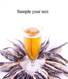 Set Of Dried Fish And Beer Royalty Free Stock Images