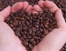 Free Coffee Beans In Hands Stock Images - 19625744
