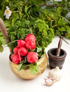 Free Fresh Radishes With Garlic Royalty Free Stock Photography - 19627207