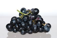 Free Blue Grapes From The Front Royalty Free Stock Image - 19628986