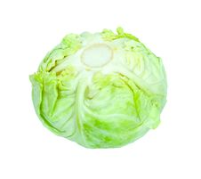 Free Green Cabbage Stock Images - 19629574