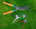 Free Clippers On The Grass Royalty Free Stock Images - 19630569