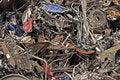 Free Scrap Metal 5 Stock Photo - 19635860