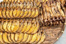 Dry Sheatfish Stock Images